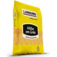 Milho Grão Languiru 5kg