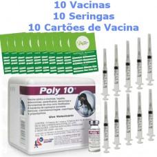 Combo 10 vacinas + 10 seringas + 10 cartões de vacina